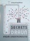 Secrets Draun From Underground book by Richard Kaufman